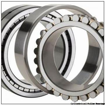 2.559 Inch | 65 Millimeter x 3.166 Inch | 80.421 Millimeter x 0.906 Inch | 23 Millimeter  LINK BELT MA1213  Cylindrical Roller Bearings